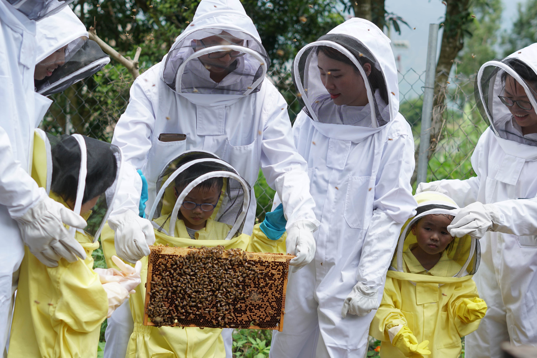 親子蜜蜂團